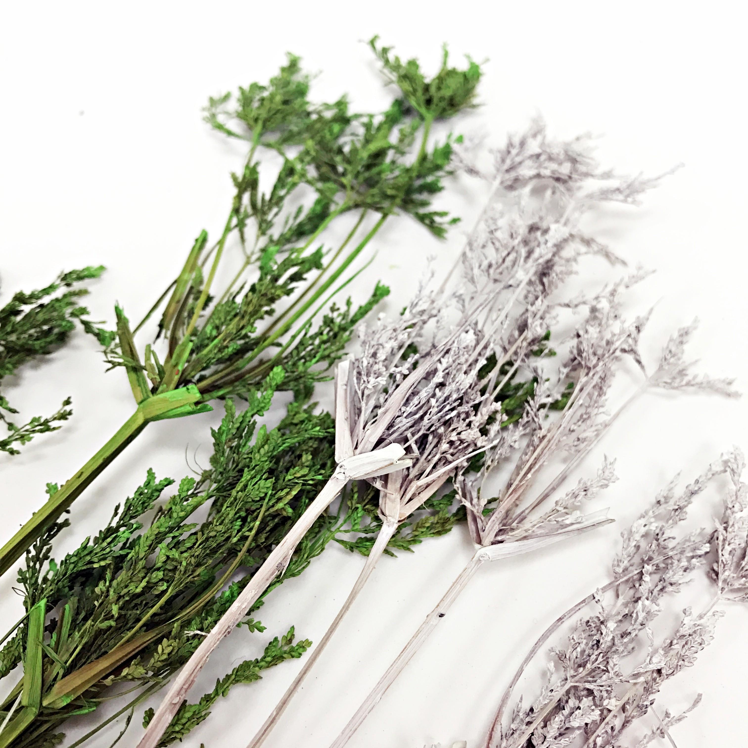 花束系列-竹香草