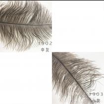 #19羽毛鴕鳥毛