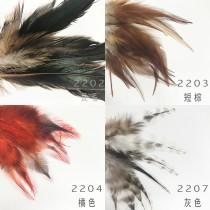 #22羽毛雞毛